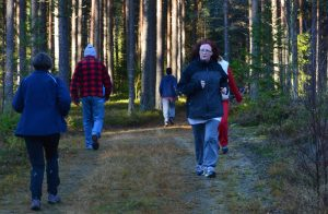 Voksne mennesker som trener i skogen