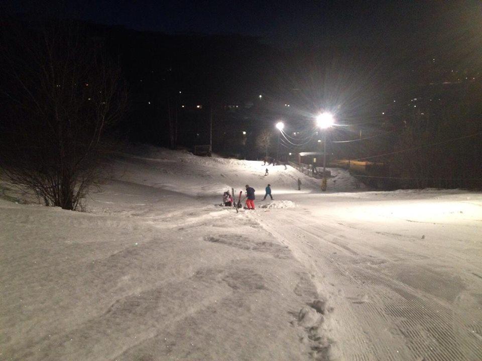 Personer som kjører alpint. Foto.