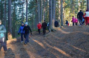 Personer som går tur i skogen. Foto.
