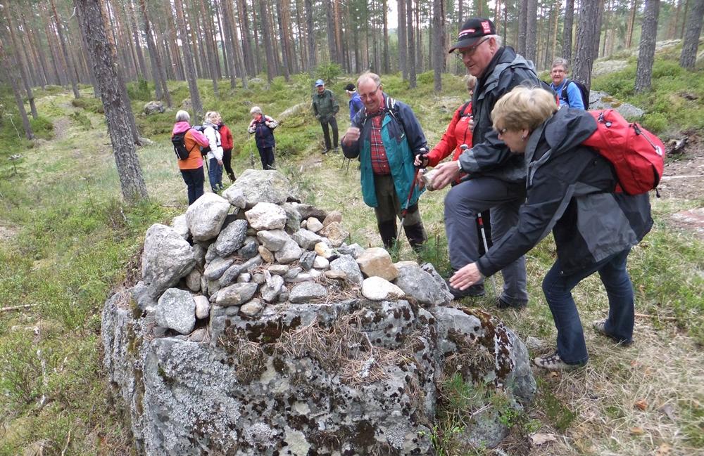 Mennesker som står i skogen og kikker på et steingjerde. Foto.