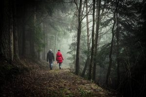 Mennesker. Tur i skogen. foto