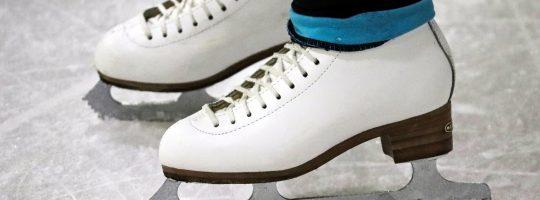Skoyter